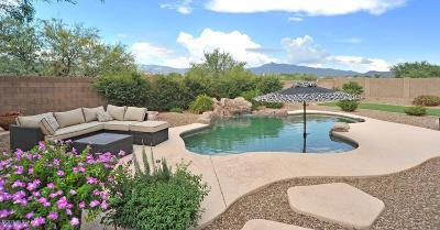 Vail Single Family Home For Sale: 9419 S Via Bandera