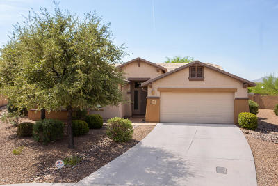 Tucson Single Family Home For Sale: 9875 N Sand Dollar Court