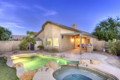 Tucson Single Family Home For Sale: 7944 W Sacramento Hill Drive