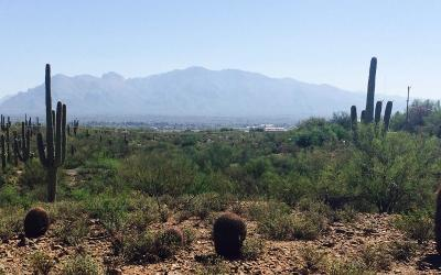 Residential Lots & Land For Sale: W Sweetwater Drive