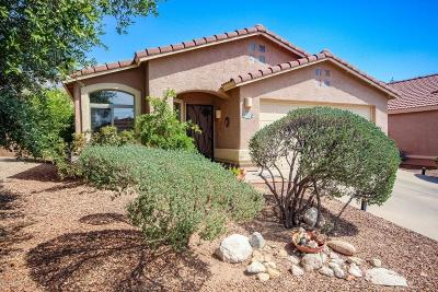 Tucson Single Family Home For Sale: 2422 E Skipping Rock Way