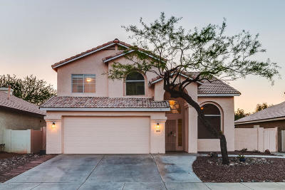 Tucson Single Family Home For Sale: 6734 W Nueva Vista Drive