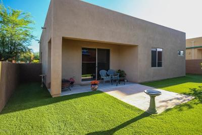 Tucson Single Family Home For Sale: 5174 S Emma Court