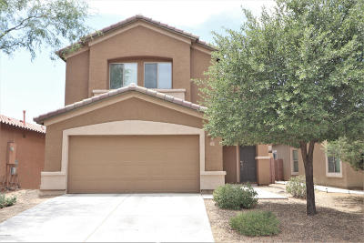 Sahuarita Single Family Home For Sale: 113 N Mattie Canyon Drive