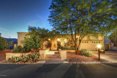 Tucson Single Family Home For Sale: 910 N Circulo Zagala