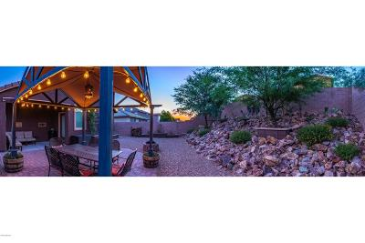 Vail Single Family Home Active Contingent: 10447 S Cutting Horse Drive