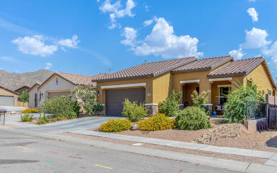 Vail Single Family Home For Sale: 11036 E Sageberry Way