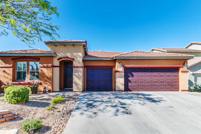 Sahuarita Single Family Home For Sale: 1144 E Cotton Field Lane