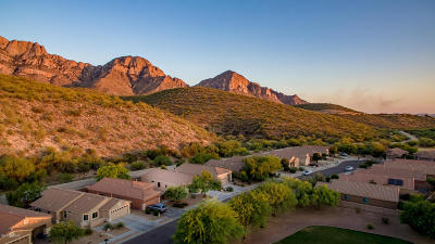 Oro Valley Single Family Home For Sale: 2340 E Ram Rock Road