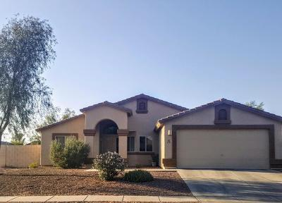 Tucson Single Family Home For Sale: 5582 W Red Rock Ridge Street