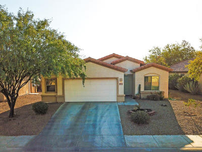 Marana Single Family Home Active Contingent: 12659 N Crooked Willow Drive