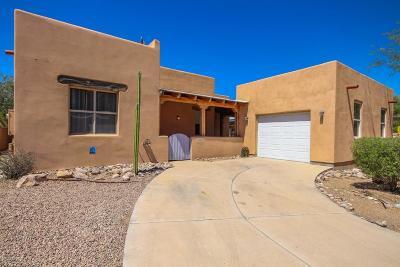 Tucson Single Family Home For Sale: 10511 E Eleanor Maldonado Place