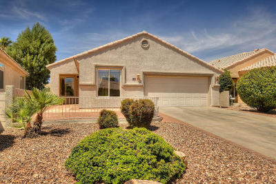 Green Valley Single Family Home For Sale: 298 W Continental Vista Place