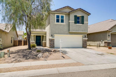 Tucson Single Family Home For Sale: 4698 W Calatrava Lane