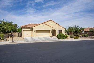 Marana Single Family Home For Sale: 12457 N Barbadense Drive N