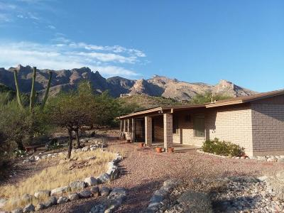 Tucson Single Family Home For Sale: 6745 N Quartzite Canyon Place