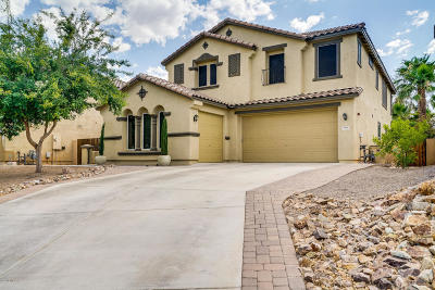 Sahuarita Single Family Home For Sale: 809 W Calle La Bolita