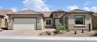 Marana Single Family Home Active Contingent: 14166 N Bright Angel Trail