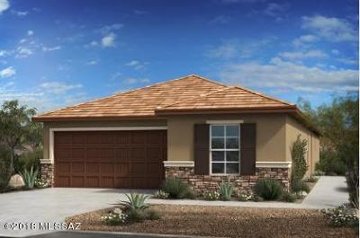 Tucson Single Family Home For Sale: 8713 N Rome Court