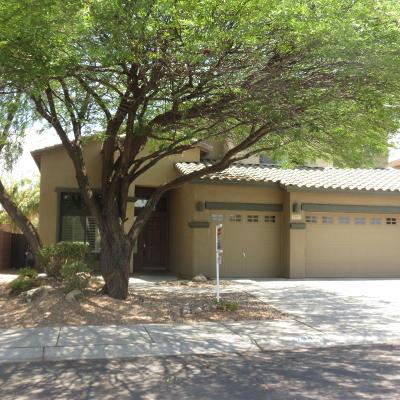 Tucson Single Family Home For Sale: 7389 W Crimson Ridge Drive