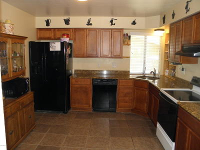 Tucson Single Family Home For Sale: 4724 W Wild Horse Drive