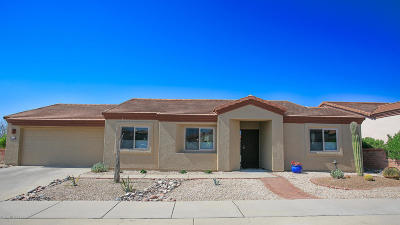Green Valley  Single Family Home For Sale: 4377 S Desert Jewel Loop