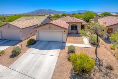 Tucson Single Family Home Active Contingent: 6151 S Kaufman Drive