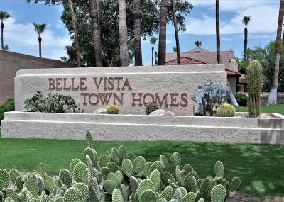 Pima County Townhouse For Sale: 8491 E Tiffany Drive