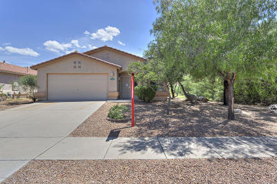 Tucson Single Family Home For Sale: 2382 E Skipping Rock Way