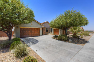 Sahuarita Single Family Home For Sale: 1386 E Lower Mine Lane