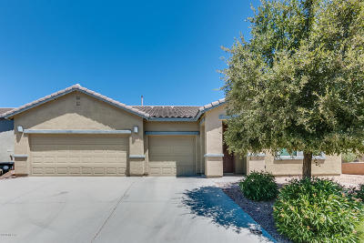 Sahuarita Single Family Home For Sale: 1109 E Pecan Orchard Loop