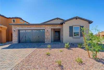 Tucson Single Family Home For Sale: 985 W Hesperaloe Court