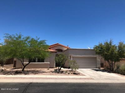 Tucson Single Family Home Active Contingent: 534 N Daystar Mountain Drive