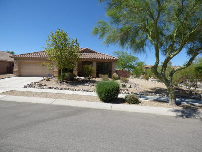 Corona de Tucson Single Family Home For Sale: 9121 E Scarlet Bluffs Place