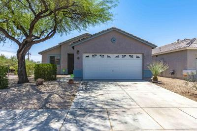 Pima County Single Family Home For Sale: 2319 W Rousseau Street