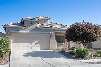 Sahuarita Single Family Home For Sale: 825 W Calle Valenciana