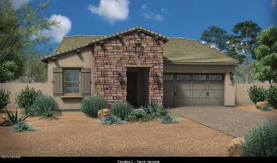 Tucson Single Family Home For Sale: 990 W Hesperaloe Court