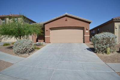 Tucson Single Family Home For Sale: 6192 W Bandelier Court