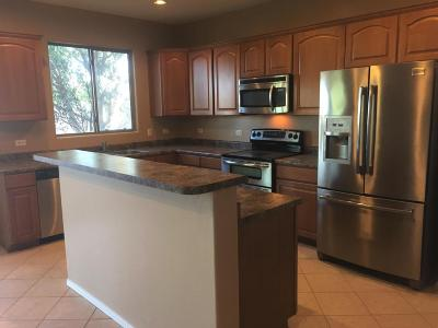 Tucson Single Family Home For Sale: 8732 N Finfrock Drive