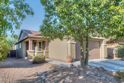 Pima County Single Family Home Active Contingent: 2879 W Duskywing Drive