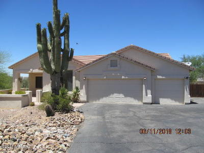 Pima County Single Family Home For Sale: 11517 N Verch Way