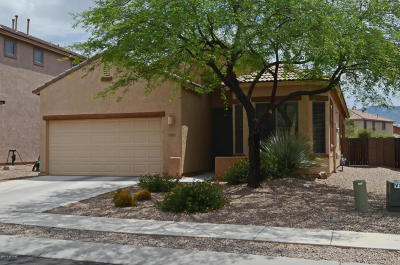 Oro Valley Single Family Home Active Contingent: 12924 N Carlsbad Place