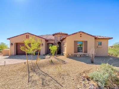 Pima County Single Family Home For Sale: 465 W Echo Point Place