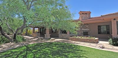 Vail Single Family Home For Sale: 8420 S Long Bar Ranch Place