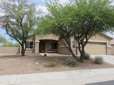Marana Single Family Home Active Contingent: 12658 N Stone Pillar Drive