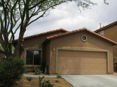 Sahuarita Single Family Home For Sale: 57 N Mail Station Lane