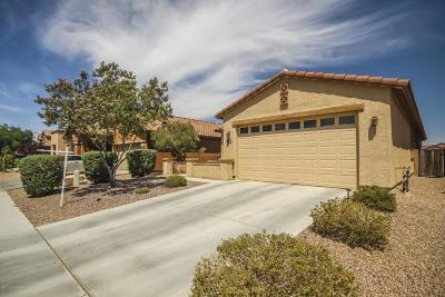 Tucson Single Family Home For Sale: 6210 W Sugar Pine Trail