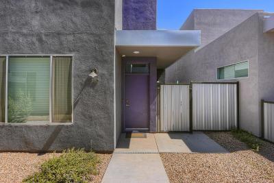 Tucson Single Family Home For Sale: 940 E Lustrum Lane