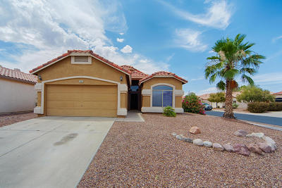 Tucson Single Family Home For Sale: 7997 N Panamint Drive