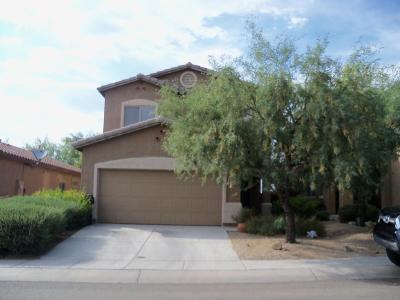 Sahuarita Single Family Home For Sale: 983 E Mount Shibell Drive